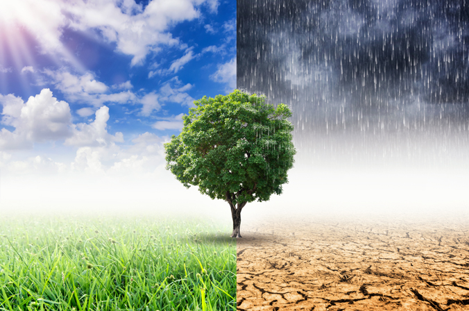 Climate Change Weather Impact